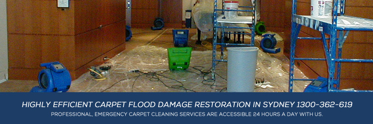 Carpet-flood-damage-restoration-Sydney-750-A