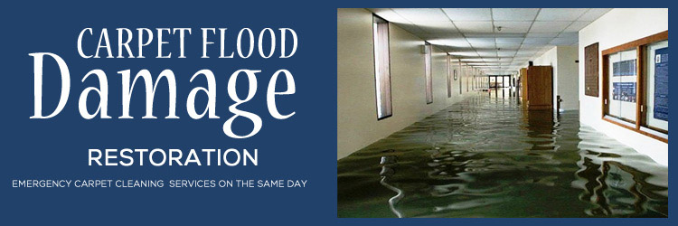 Carpet Flood Damage Restoration Manly East