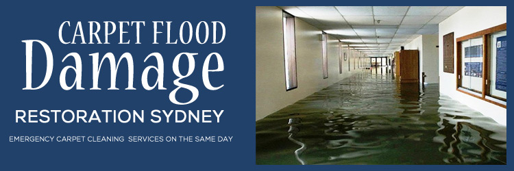 carpet-flood-damage-restoration-sydney