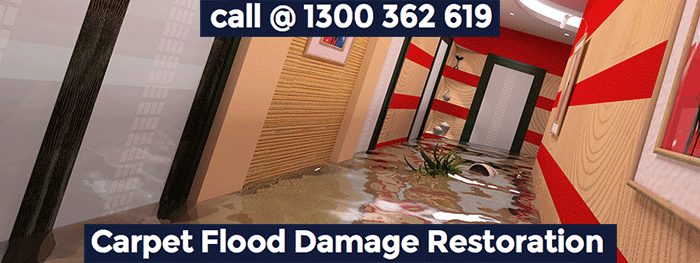Carpet Flood Damage Restoration Round Corner