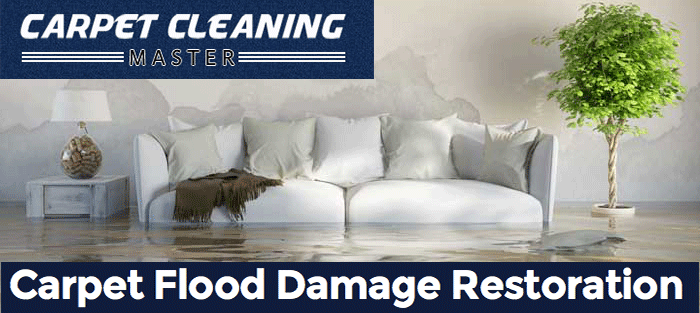Carpet flood damage restoration in Denistone