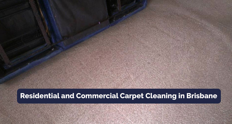 Residential and Commercial Carpet Cleaning in Muirlea