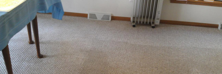 Carpet Cleaning Commissioners Flat