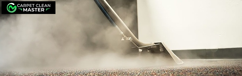 Professional Carpet Steam Cleaning-Services